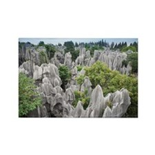 Stone forest, ShiLin, China Rectangle Magnet
