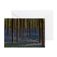 Bluebells in hallerbos Greeting Card