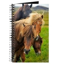 Horses being curious Journal