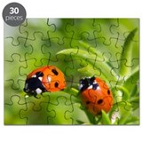 Two ladybugs Puzzle