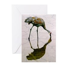 Profile of a Sandhill cr Greeting Cards (Pk of 20)