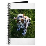 Cavalier Cow Journal