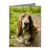 Basset Hound Note Cards (Pk of 20)