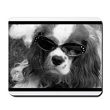 Movie Star Cavalier Mousepad