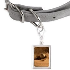 Golf Ball in a Sand Trap Small Portrait Pet Tag