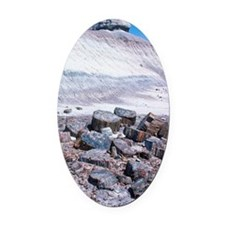 Petrified Forest National Park, Ar Oval Car Magnet