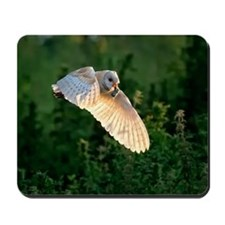 Barn owl Mousepad