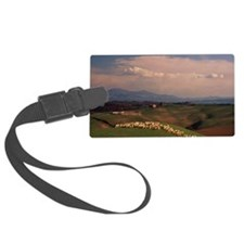 Italy, Tuscany, flock of sheep o Luggage Tag