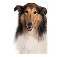 Scotch Collie Postcards (Package of 8)