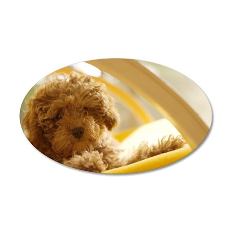 Poodle puppy on yellow chair 35x21 Oval Wall Decal