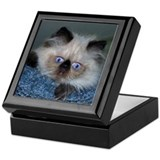 Blue-Eyed Himalayan Keepsake Box