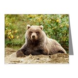 Coastal brown bear takes  br Note Cards (Pk of 10)