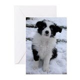 Border collie greeting cards Greeting Cards