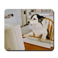 Border Collie Wearing Glasses Sitting at  Mousepad