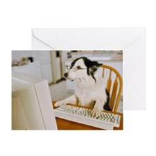 Border Collie Wearing Glasses Sittin Greeting Card