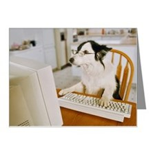 Border Collie Wearing Glasse Note Cards (Pk of 20)