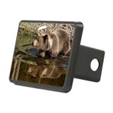 Double Trouble Rectangular Hitch Cover