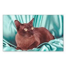 Burmese cat Decal