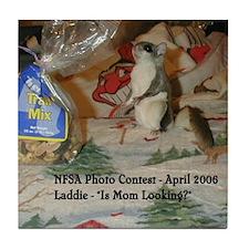 Laddie Tile Coaster