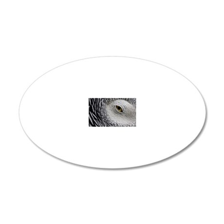 Eyepoint 20x12 Oval Wall Decal
