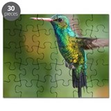 Hummingbird flight. Puzzle