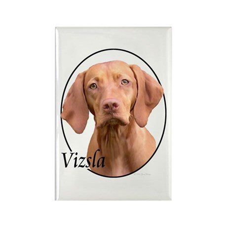 Vizsla Rectangle Magnet (10 pack)