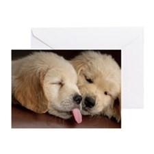 2 Golden Retriever Puppi Greeting Cards (Pk of 20)