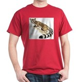 Ringtail Cat T-Shirt