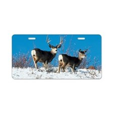 Mule deer Aluminum License Plate