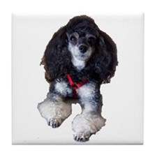 Phantom Poodle Tile Coaster