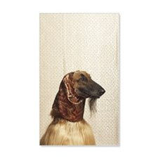 Afghan hound wearing scarf Wall Decal