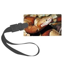 Jupiterimages Luggage Tag