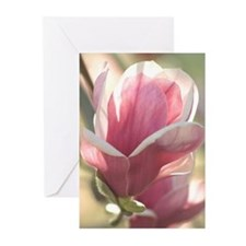 Spring Magnolia Greeting Cards