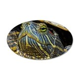 A red-eared slider turtle Wall Decal