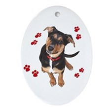 Puppy and Prints Oval Ornament