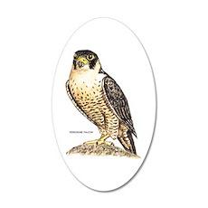 Peregrine Falcon Bird 20x12 Oval Wall Decal