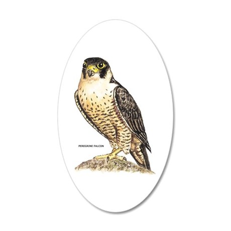 Peregrine Falcon Bird 35x21 Oval Wall Decal
