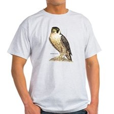 Peregrine Falcon Bird T-Shirt