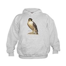Peregrine Falcon Bird Hoodie