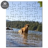 Golden retriever standing in Lost Lake, Ore Puzzle