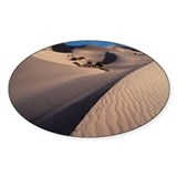 Sand Dunes , Death Valley , N Decal