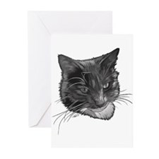 Grey and White Cat Greeting Cards (Pk of 20)