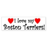 I Love my Boston Terriers Bumper Car Sticker