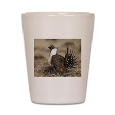 Sage Grouse Strut Shot Glass