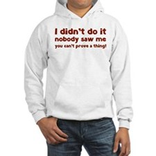 I didn't do it. Hoodie