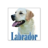 Lab(yellow)Name Rectangle Sticker