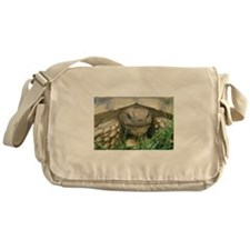 sulcata Messenger Bag