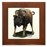 Indian Gaur Framed Tile