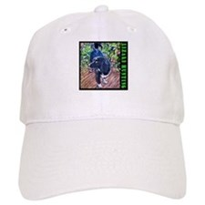 Lizard Hunter Baseball Cap