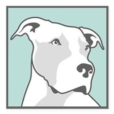 "Cute Pitbull logo Square Car Magnet 3"" x 3"""